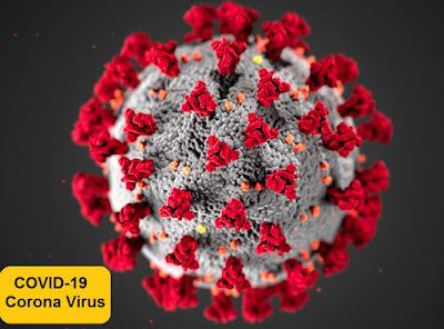 Coronaviren beziehen sich auf eine große Familie von Viren gemäß den biologischen Klassifizierungssystemen. Diese Familie ist verantwortlich für viele bekannte Krankheiten beim Menschen wie die Erkältung. Dieses Coronavirus ist ein neuer Stamm, der beim Menschen früher nicht identifiziert wurde, das neuartige Coronavirus, das das derzeitige Chaos verursacht.    Die häufigsten Symptome dieser Virusinfektion sind Fieber, Husten und Symptome im Zusammenhang mit den Atemwegen wie Atembeschwerden und Atemnot. In seiner schwersten Form kann es auch zu SARS, Nierenversagen, Lungenentzündung und sogar zum Tod führen.    Wirkung von Desinfektionsmitteln:    Händedesinfektionsmittel sind chemisch meistens Alkohol (insbesondere Isopropylalkohol) sowie einige Weichmacher und einige Öle (zum Zwecke des Aromas).    Es wurde nachgewiesen, dass Händedesinfektionsmittel Eigenschaften aufweisen, mit denen die auf Oberflächen vorhandenen Mikroben abgetötet werden können, und diese Eigenschaft zum Abtöten von Mikroben wird Desinfektionsmitteln durch den in ihnen enthaltenen Alkohol verliehen.    Obwohl dies von großer Bedeutung ist, insbesondere während des aktuellen Problems, dass Coronaviren weltweit zu Zerstörungen führen, sollten Desinfektionsmittel verwendet werden, wobei zu berücksichtigen ist, dass das regelmäßige und ordnungsgemäße Waschen der Hände mit Seife für mindestens 20 Sekunden Vorrang haben sollte, da dies die beste Methode ist Um die auf unseren Händen vorhandenen Keime abzutöten, sollten Händedesinfektionsmittel als Alternative zu Wasser und Seife verwendet werden.
