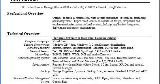 it management and consulting sample resume format in word