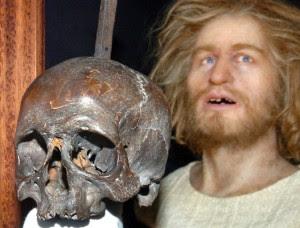 Skull of Klaus Störtebeker