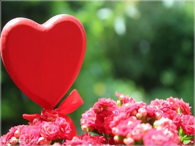 اجمل صور حب رومانسيه جديدة 2020 للعشاق عليها كلام حب