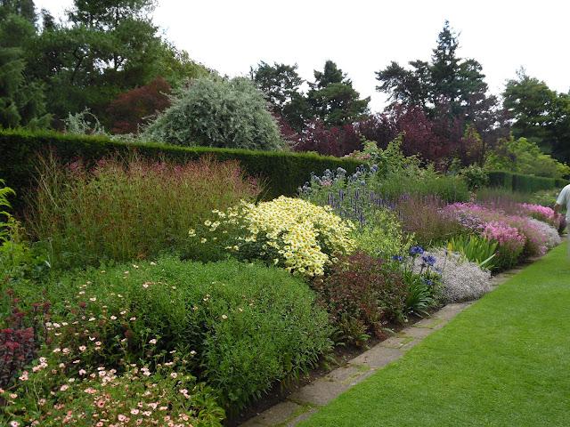 Herbaceous Long Border angielska rabata bylinowa