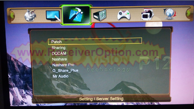 REDVISION P12 HD RECEIVER NEW SOFTWARE WITH G SHARE PLUS OPTION