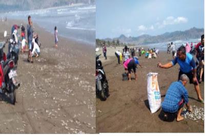 Ratusan Ikan Mendadak Mati Terdampar Di Tepi Pantai, Besoknya Terjadi Gempa Susuan 5,2 SR