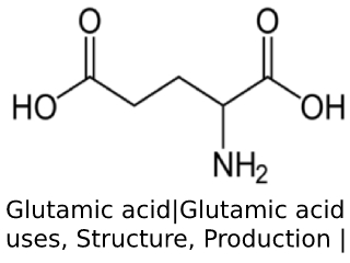 Glutamic acid.