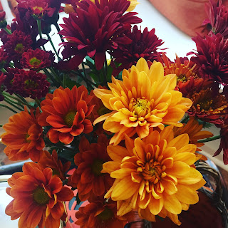 Trader Joes Fall Flowers