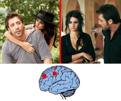 الحب والكراهية في الدماغ