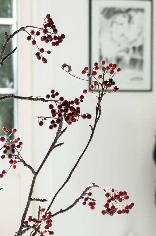 pihlajanoksa, syksy, valokuvaus, olohuone, asetelmia, mustavalkoinen, kasvit, kukkia, luonnosta, luonto