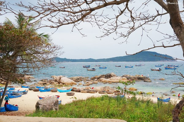 Mai Nha (Roof) Island - Enchanting Desert Island of Phu Yen