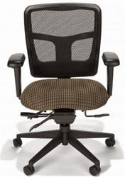 Echelon Mid Back Chair