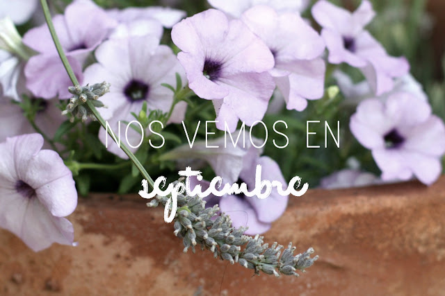 https://mediasytintas.blogspot.com/2017/07/nos-vemos-en-septiembre.html