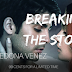 #SALEBLITZ - Breaking the Storm  Author: Sedona Venez  @agarcia6510  @SedonaVenez