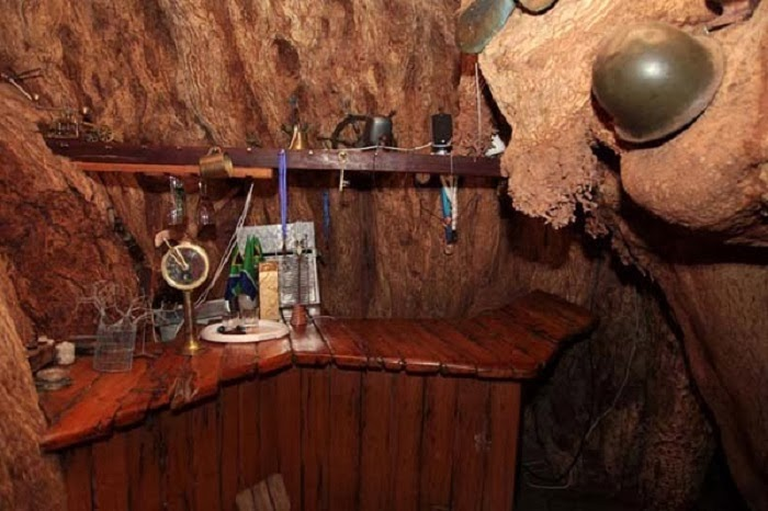 Now, that's the kind of pub that can give you a stiff drink. - As If A 6,000 Year Old Tree Isn't Awesome Enough, Wait Til You See What's Inside It.