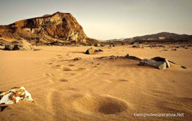 Desiertos de la vida