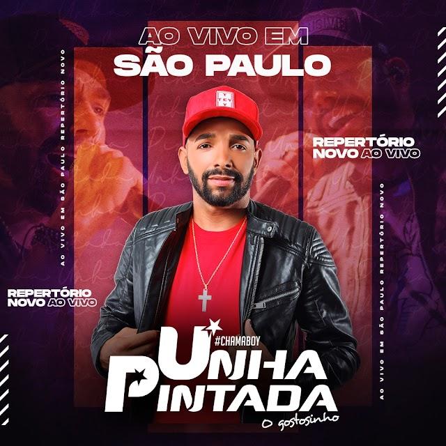 UNHA PINTADA AO VIVO EM SÃO PAULO