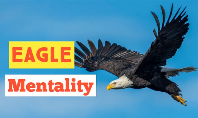 The eagle Mentality, Six Facts about eagle, Eagle Attitude, Eagle Mindset 2021