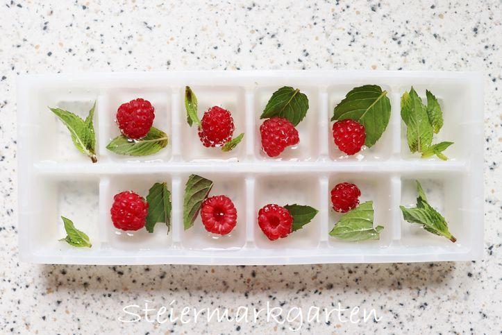 Beeren-Minze-Eiswürfel-DIY-Steiermarkgarten