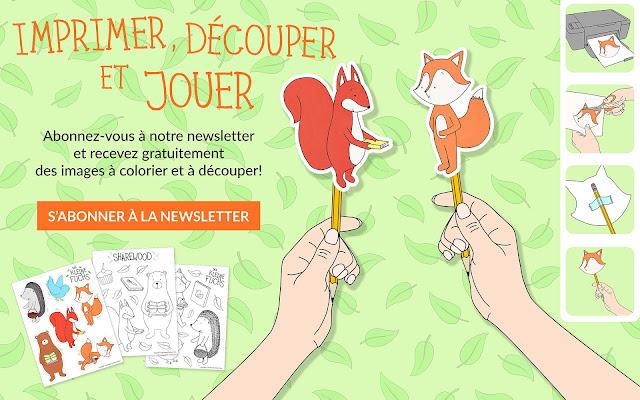Le petit renards - S'abonner à la newsletter