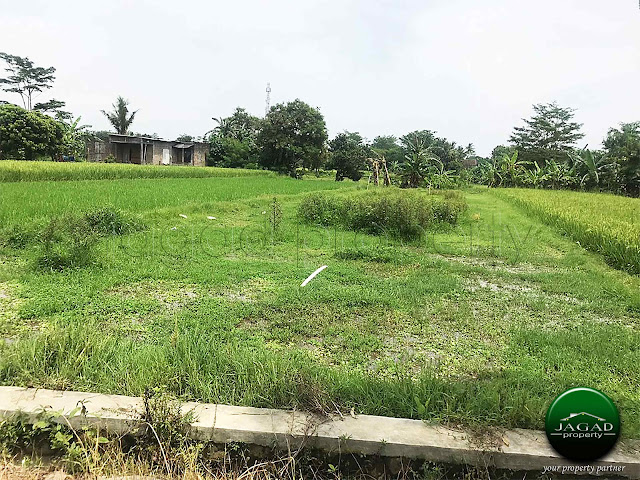 Tanah Akses jalan Aspal di Sidomoyo