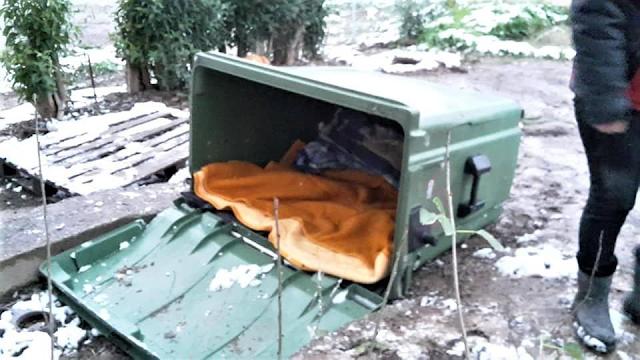 Πως μπορούν παλιοί κάδοι απορριμμάτων να προστατέψουν από το κρύο και το χιόνι τα αδέσποτα