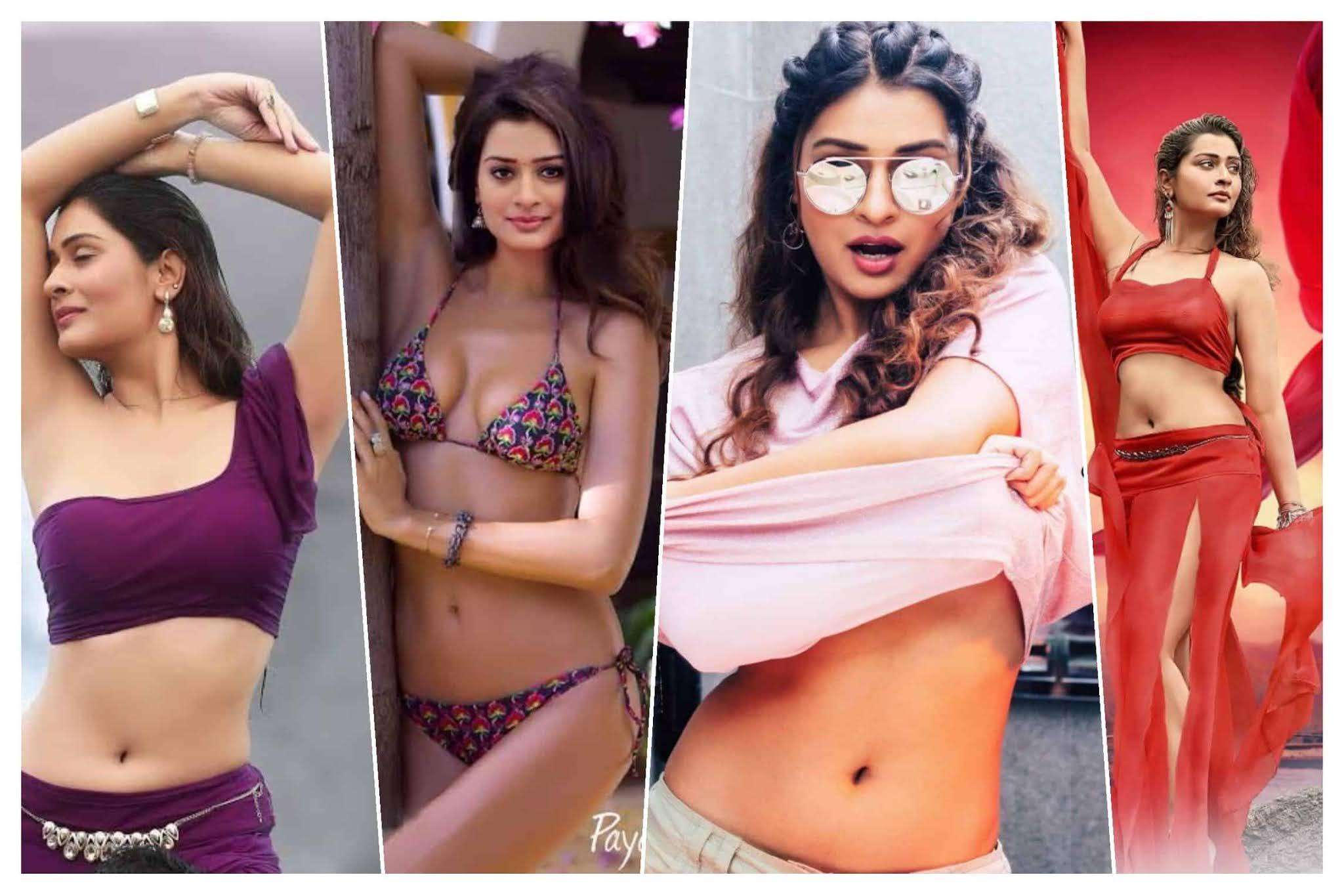 Payal Rajput Sexy Navel Photos