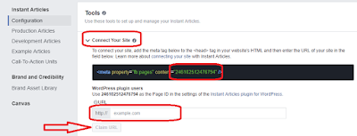 memasukkan nomor ID fanspage ke plugin instan artikel