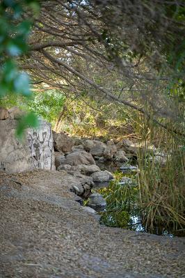 Wanderung zu den Wasserfällen im Barranco del Toro | San Agustín/Maspalomas | Wandern auf Gran Canaria 03