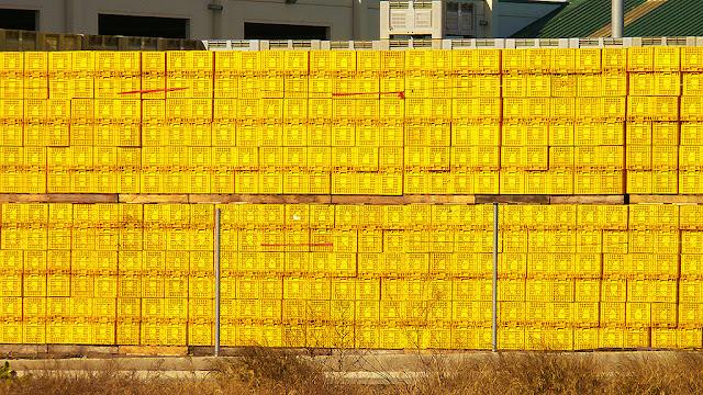 Muro amarillo