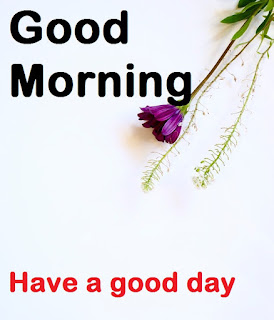 good morning images whatsapp