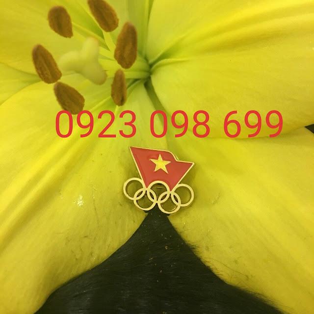 Xưởng làm huy hiệu đồng, logo cài áo, huy hiệu đồng mạ vàng, bảng tên nhân viên