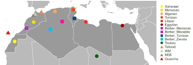 Genetic imprint of Palaeolithic detected in North African populations