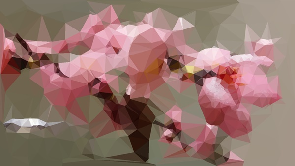poly art android