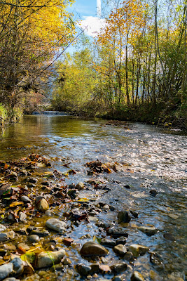 Talwanderung Inzell | Herbstwandern im Chiemgau | Moor-Erlebnis-Pfad und Reifenrutsche Kesselalm 05