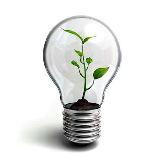 Ser sustentável ou não ser, eis a questão