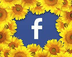 Business modal facebook