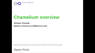 https://people.collabora.com/~tomeu/Chamelium_Overview.odp