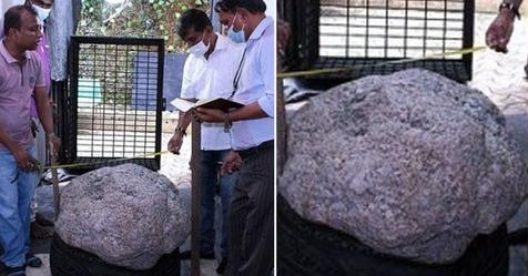 Star sapphire cluster worth up to $100MILLION is discovered in Sri Lankan man's backyard by workmen digging a well