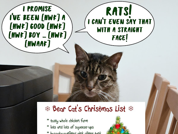 A Momma Kat Christmas