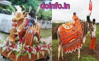 pola festival, pola festival images, pola festival in hindi
