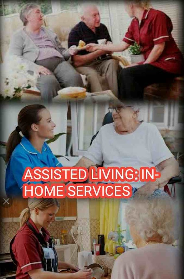 Assisted Living In Home Services