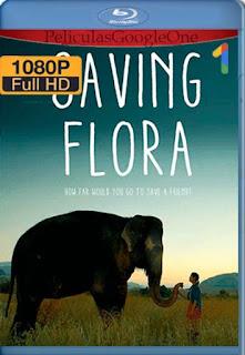 Saving Flora[2018] [1080p BRrip] [Latino-Ingles ] [GoogleDrive] LaChapelHD