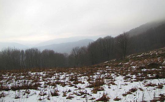 Widokowa polana przed Manewą.