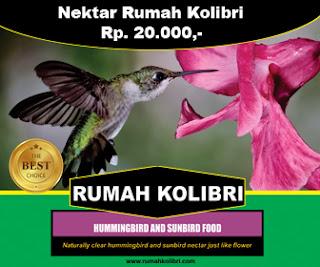 Nektar Rumah Kolibri bagus untuk burung