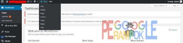Ini adalah halaman admin wordpress