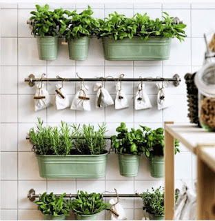 Plants growing in green metal pots hanging on a white wall. There are also little white bags hanging in a row.