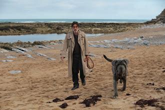 Cinéma : Mon chien Stupide, de Yvan Attal - Avec Charlotte Gainsbourg, Yvan Attal