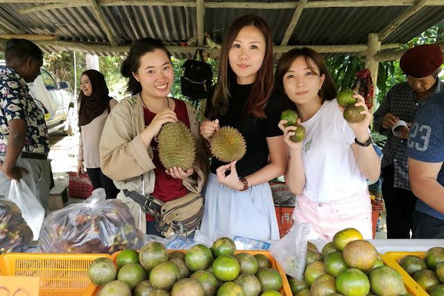 Thailand Betong durian