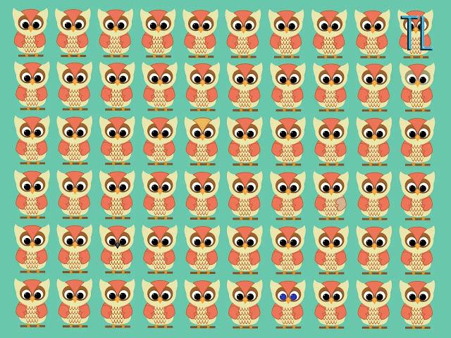 Encuentra los 5 búhos diferentes