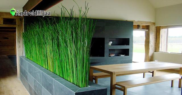 inspirasi partisi pembatas ruangan dengan tanaman hidup