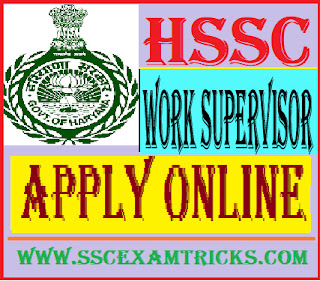 HSSC Work Supervisor Vacancy