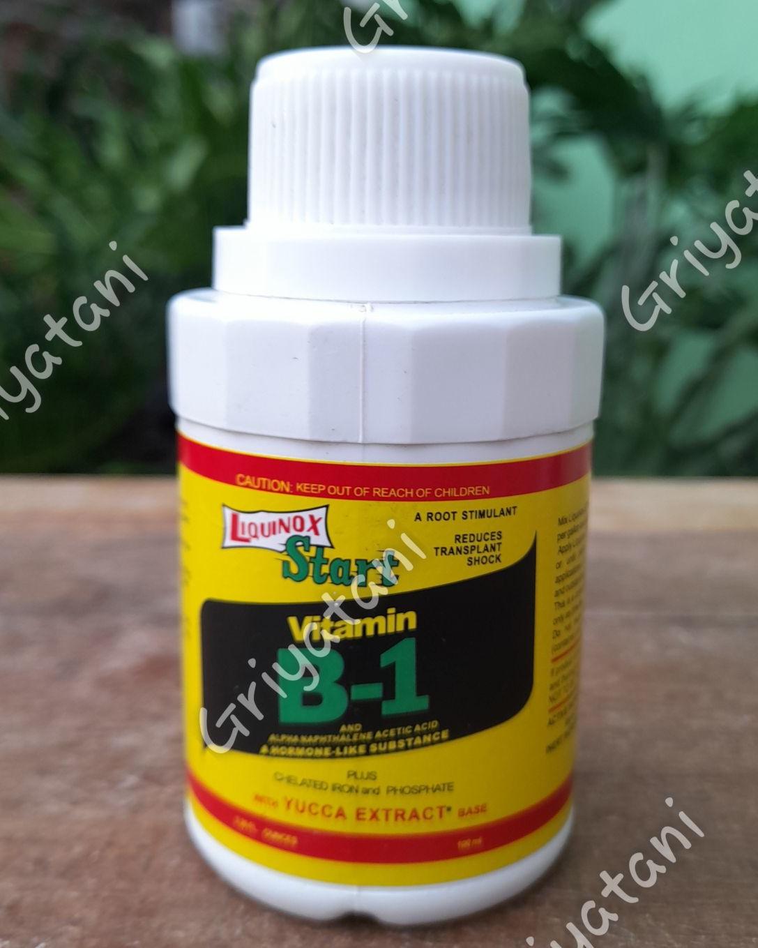 Vitamin b1 lquinox 400